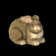 Кролик малый серый