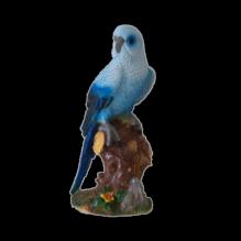 Попугай большой голубой