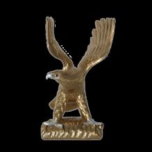 Орел с распростертыми крыльями