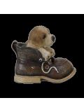 Собака в ботинке