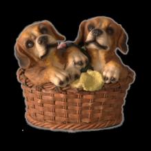 Две собаки в корзине