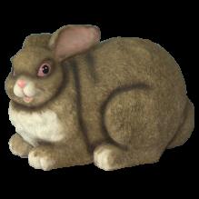 Кролик большой серый