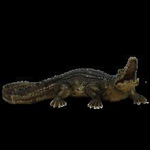 Крокодил большой
